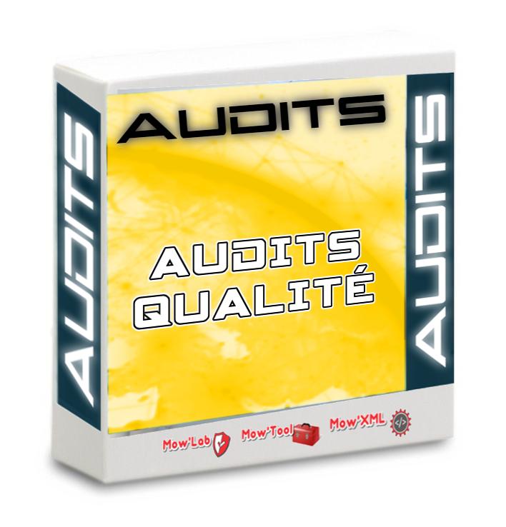 Audit Qualité Basic